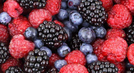 Transporte Refrigerado de Berries